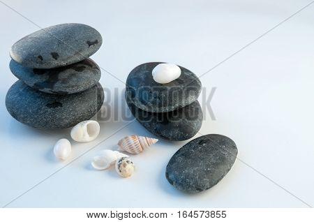 Large Round Stones And Seashells On A White Background Большие круглые камни и морские ракушки на бе