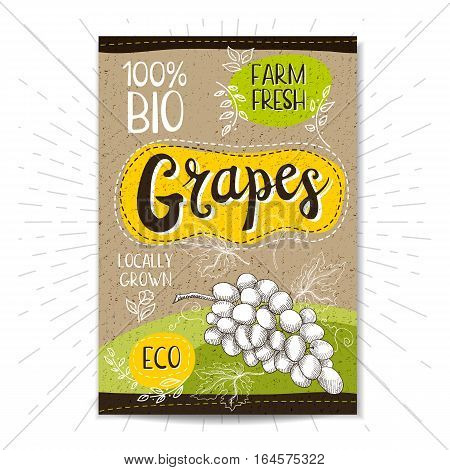 Colorful label in sketch style, food, spices, cardboard textured background. Grapes Fruits. Bio, eco, farm, fresh. locally grown. Hand drawn vector illustration