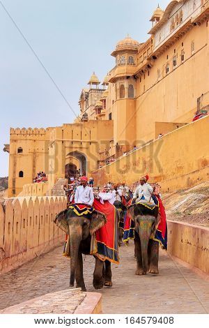 Amber, India - March 1: Unidentified Men Ride Decorated Elephants From Amber Fort On March 1, 2011 I