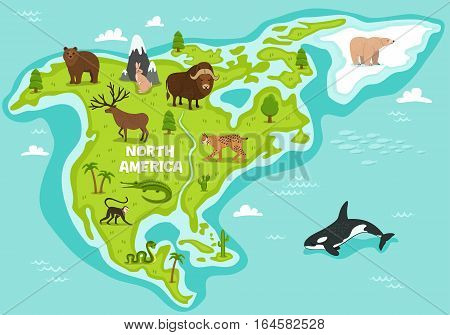 North american map with wildlife animals vector illustration. American flora and fauna, monkey, alligator, bear, lynx, bison, snake, deer, whale. North american continent in cean with wild animals.