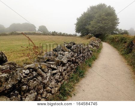 Historic Camino de Santiago bath winding through the Galicia region of northeastern Spain on a foggy summer morning.