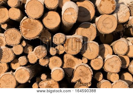 Pile of wood logs. Timber texture. Logs covered with snow. Photo on a sunny winter day.