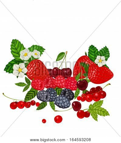 Berries Set Vector Illustration. Strawberry, Blueberry, Cherry, Raspberry, Red currant. Berries and their Combinations Set