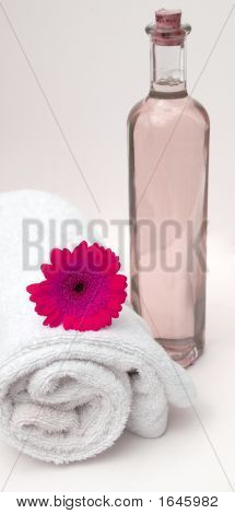 Gerbera Pink Spa