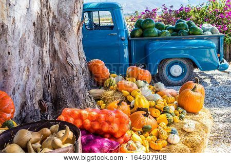 Old truck with fresh vegetables and fruit harvest parked next to tree