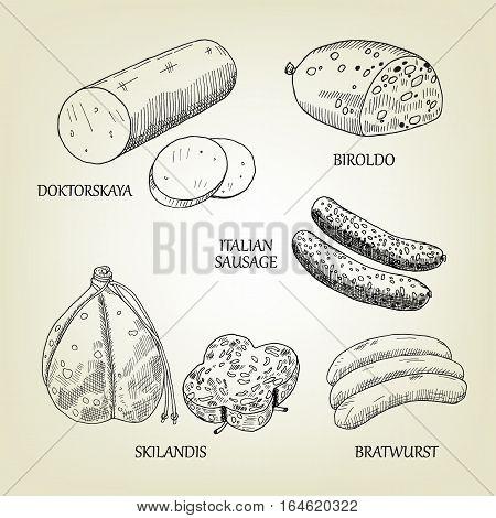 Graphic collection of sausages, skilandis, biroldo, bratwurst, doktorskaya and italian frankfurters. Vector meat food used for advertising farm products, butcher shop or menu design.