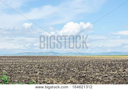 Countryside Agriculture Field, Meadow, Blue Clouds Sky, Cloudscape, Outdoor.