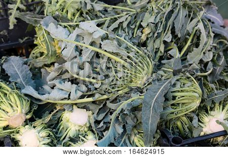 Genuine Green Broccoli Northern Italy Called For Sale At The Gre