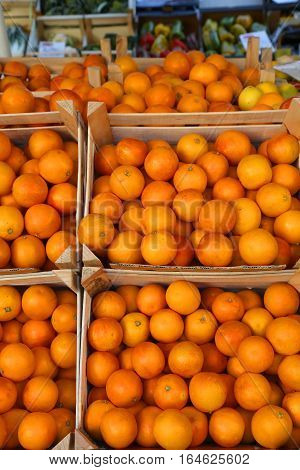 Many  Oranges Grown With Natural Treatments Without Chemical Add
