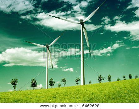 Environmental wind, global ecology