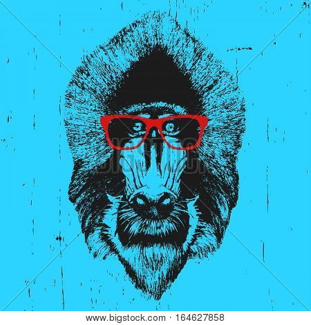 Portrait of  Mandrill with glasses. Hand-drawn illustration. T-shirt design. Vector