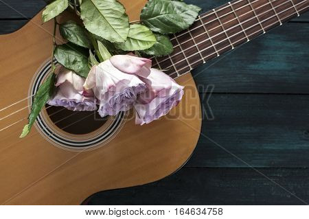 A photo of a guitar neck with tender pink roses, on a dark wooden background with copy space. Selective focus