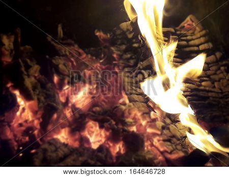 It lit a fire in the oven. Yellow flame breaks through the red coals. Beautiful fire