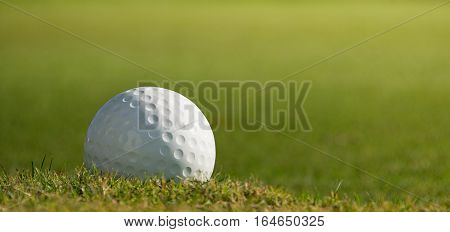 Golf ball on course with green grass