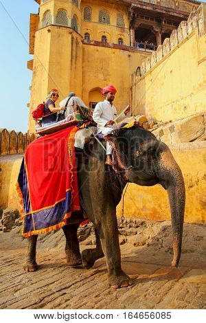 Amber, India - November 13: Unidentified People Ride Decorated Elephant To Amber Fort On November 13