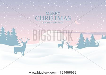 Сhristmas background with deers in forest. Winter landscape on background sunset