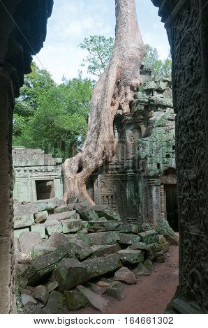 View of a Angkor temple ruin through an entrance gateway with views of the tree roots growing on the structure