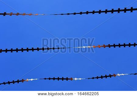 Ile de France close up of barbed wire on a blue sky