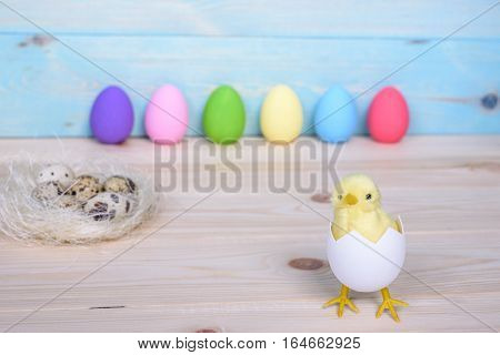 Easter Eggs On Wooden Background With Chicken In Egg