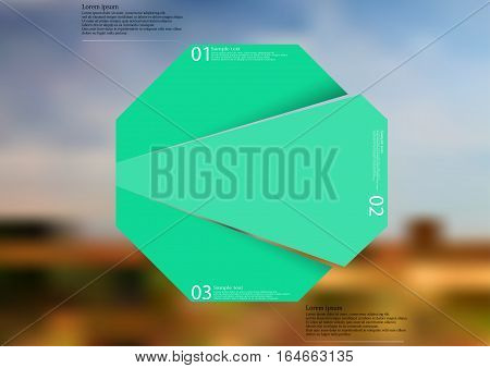 Illustration infographic template with motif of green octagon randomly divided to three sections with simple signs. Blurred photo with natural motif with field and cloudy sky is used as background.