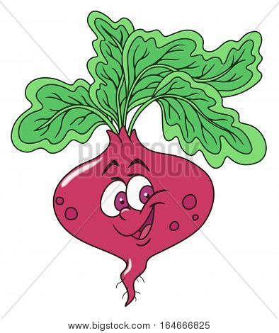 Cheerful fresh beetroot cartoon character. On white background.