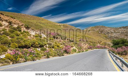 Crete island landscape, Greece. Road with plants of oleanders and flowers on the both sides