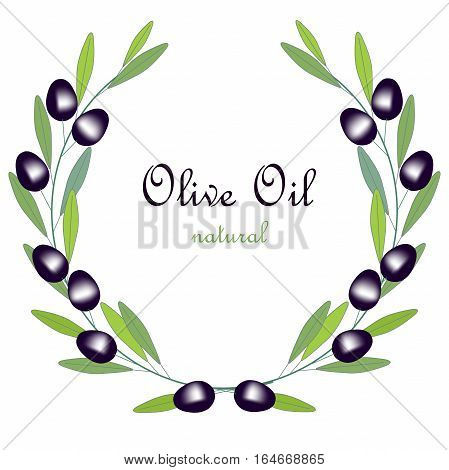 Olive Oil label, olive branch wreath with green leafs and black fruits on white, stock vector illustration