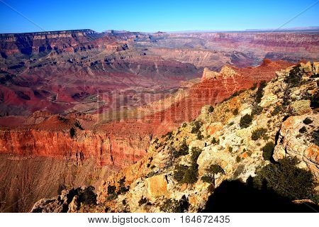 Late afternoon in the Grand Canyon Arizona