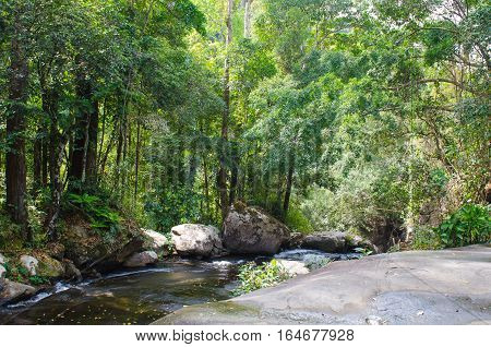 river in the wild tropical jungles of Indochina