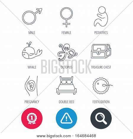 Achievement and search magnifier signs. Fertilization, pregnancy and pediatrics icons. Baby child, whale and octopus linear signs. Treasure chest, double bed icons. Hazard attention icon. Vector
