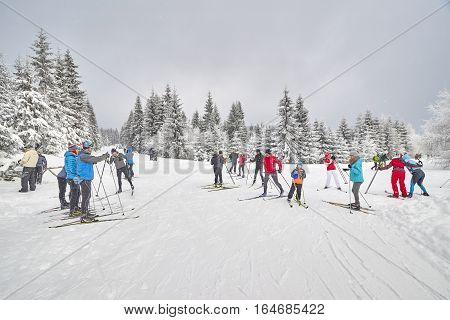 Jakuszyce, Poland - January 06, 2017: Cross-country Skiers Resting On Trails Intersection. For Over