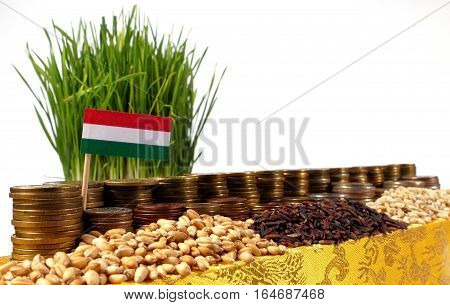 Hungary Flag Waving With Stack Of Money Coins And Piles Of Wheat And Rice Seeds