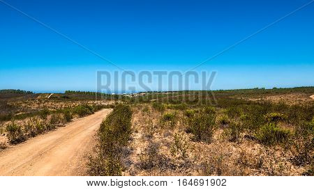 Portugal - Country Road