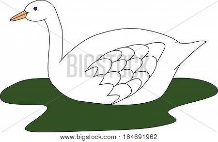 illustration of beautiful white swan swimming in green lake