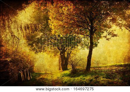 picture of an autumnal landscape with antique style texture
