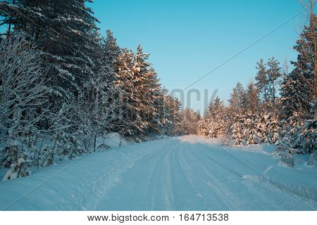 Snow covered ural forest - winter road among pines at sunset, wide angle