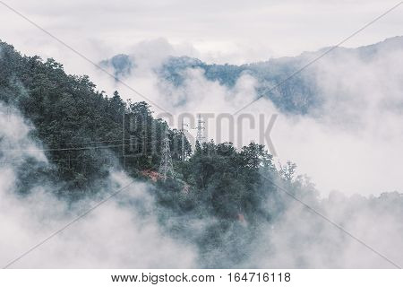 Foggy scene of tropical forest mountain with electricity tower in desaturated tone