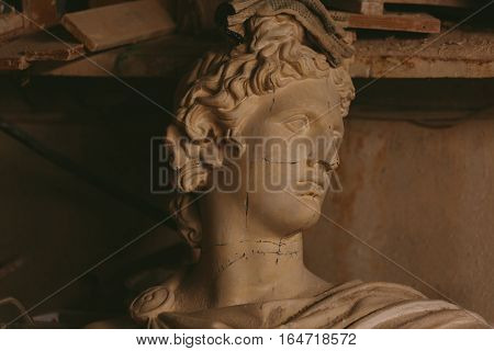 old abandoned Plaster head of Apollo Belvedere