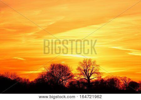 A beautiful orange sunset on the lake
