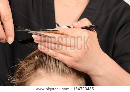 Young men at professional barber hair saloon