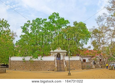 Panorama Of The Bodhi Tree Temple