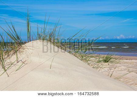 sand dunes at the Baltic sea in Kolka Latvia