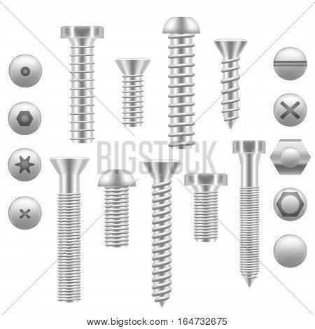 Realistic Screw Icon Set Different Shapes Detailed Construction Hardware Equipment Stainless. Vector illustration