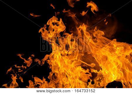 Fire flames isolated background. Power and danger concept