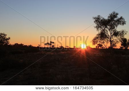 australian outback sunset overlooking trees and nature