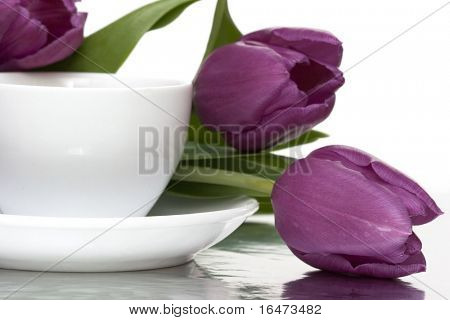 white cup of coffee with violet tulips