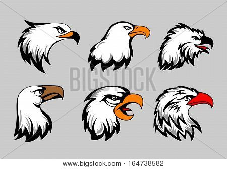 Bald eagle mascot heads vector illustration. American eagles head set for logo and labels. Falcon bird and wild predator