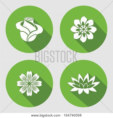 Flower icons set. Rose, chamomile, blue poppy daisy gowan lily. Floral symbols. Round circle flat sign with long shadow. Vector