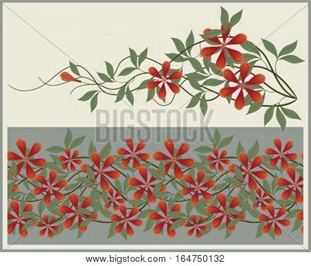 Floral elements and border. Vector illustration.