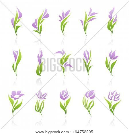Flowers. Elements for design. Vector illustration.